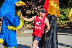Талисман woodpecker мужского бегуна высоко--fives в гонке призрения Стоковые Изображения
