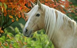 Та лошадь Стоковое Изображение