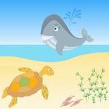 Твари моря на пляже Стоковое фото RF