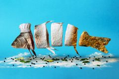 Творческая идея, рыбы проходя от сырцового к муке и к зажаренному блюду Стоковое Изображение RF