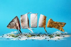 Творческая идея, рыбы проходя от сырцового к муке и к зажаренным блюдам стоковые изображения