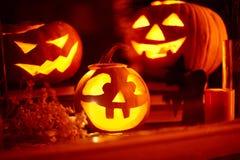 Творческая предпосылка halloween Стоковая Фотография