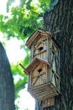 Творческая ручной работы деревянная смертная казнь через повешение дома птицы на дереве в парке Стоковое Изображение RF