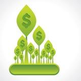 Творческие завод денег или лес доллара Стоковые Фотографии RF