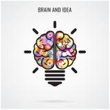 Творческие идея мозга и концепция электрической лампочки, концепция образования Стоковое фото RF