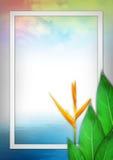 Творческие план, листья и предпосылка цветка, концепция природы Стоковое Изображение RF