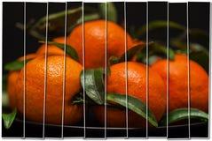 Творческий коллаж от 1 кадра Зрелые оранжевые tangerines с зелеными листьями в плите на черноте, взгляд сверху камера искусства к Стоковые Изображения RF
