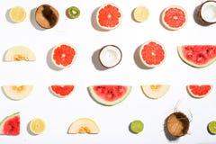 Творческий план сделал ананас, арбуз, кокос, дыню, grap Стоковые Изображения