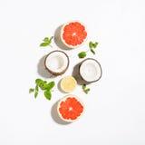 Творческий план сделал листья кокоса, грейпфрута, лимона и мяты Стоковые Фото