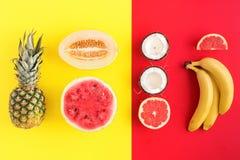 Творческий план сделанный из ананаса, арбуза, кокоса, дыни, g Стоковое фото RF