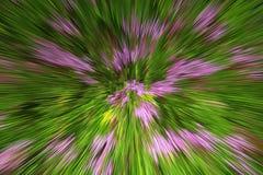 Творческий покрашенный взрыв Стоковая Фотография