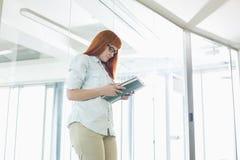 Творческий файл чтения коммерсантки в офисе Стоковое Изображение RF