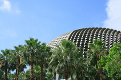 театр singapore esplanade Стоковая Фотография