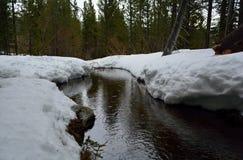Теките в зиме во время шторма дождя с снегом на банках в t стоковые изображения