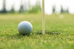 Теките новичок шара для игры в гольф на зеленом близко отверстии на день семьи стоковое изображение