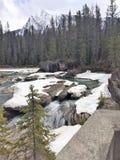 Теките с утесами покрытыми снегом - скалистыми горами, Канадой стоковые фото