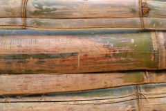 Текстура 4281 - бамбук Стоковая Фотография