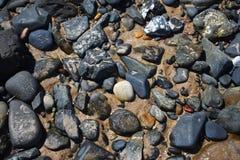 Текстура бассейна береговой породы стоковые изображения rf