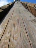 Текстура башни Oak Ridge взбираясь Стоковые Фото
