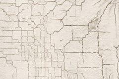 Текстура белой пакостной треснутой стены Малые прямые отказы Сразу трещиноватость на покрашенной поверхности Борозда блока клеток Стоковое фото RF