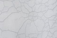 Текстура белой пакостной треснутой стены Малые прямые отказы Сразу трещиноватость на покрашенной поверхности Борозда клеток Стоковая Фотография RF