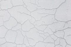 Текстура белой пакостной треснутой стены Малые прямые отказы Сразу трещиноватость на покрашенной поверхности Борозда клеток Стоковые Фотографии RF