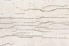 Текстура белой пакостной треснутой стены Малые прямые отказы Сразу трещиноватость на покрашенной поверхности Борозда клеток Стоковые Фото