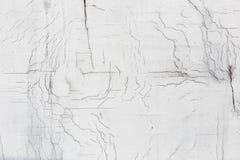 Текстура белой пакостной треснутой стены Малые прямые отказы Сразу трещиноватость на покрашенной поверхности Борозда клеток Стоковые Изображения