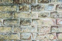 Текстура белых кирпичей Стоковое Фото