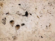 Текстура бетона безшовная текстура Стоковое Фото