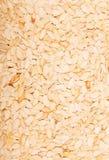 Текстура белых семян тыквы Стоковые Фото