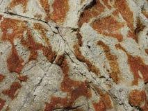 Текстура Больдэра пляжа стоковое изображение rf
