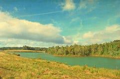 Текстура бумаги ландшафта пущи и озера стоковое фото