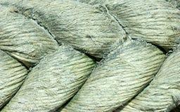 текстура веревочки Стоковые Фото