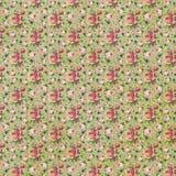 Текстура винтажных роз стиля флористическая бумажная Стоковые Изображения