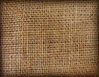 текстура вкладыша Стоковая Фотография RF