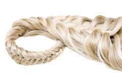 текстура волос Стоковые Фото