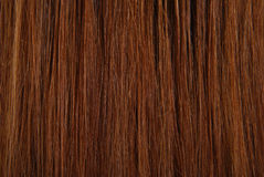 текстура волос Стоковое Фото