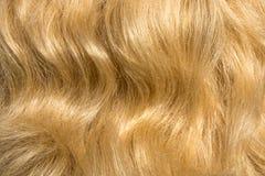 Текстура волос женщин Стоковые Фотографии RF