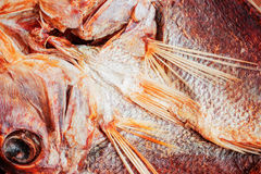 Текстура высушенных рыб Стоковые Изображения