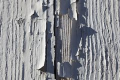 Текстура в краске Стоковая Фотография RF