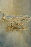 текстура голубых джинсов Стоковые Фотографии RF