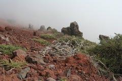 текстура горы Стоковое Фото
