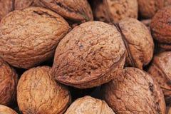 Текстура грецкого ореха Грецкие орехи Брайна большие как предпосылка конец картины грецкого ореха чокнутый вверх по фото Стоковое Фото