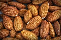 Текстура грецкого ореха Стоковая Фотография RF