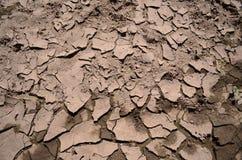 Текстура грязи Стоковые Фотографии RF