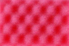 текстура губки пены целлюлозы красная Стоковое фото RF