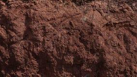 Текстура глины Стоковое фото RF