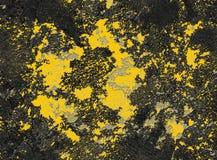 Текстура драматического желтого серого черного grunge безшовная каменная Текстура grunge черной венецианской предпосылки гипсолит Стоковое Фото