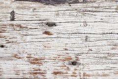 Текстура древесины расшивы Стоковая Фотография RF